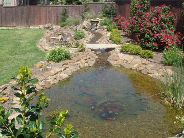 Backyard Ponds And Streams : Pics Photos  Backyard Streams And Ponds Pictures